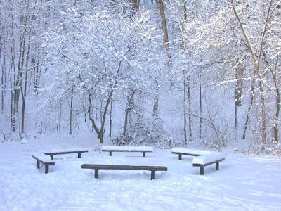 بالصور صور فصل الشتاء , غير خلفية موبيلك حسب البرد 56 5