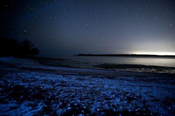 صورة اجمل صور لجزر المالديف الساحرة , شواطئ جزر المالديف بالصور
