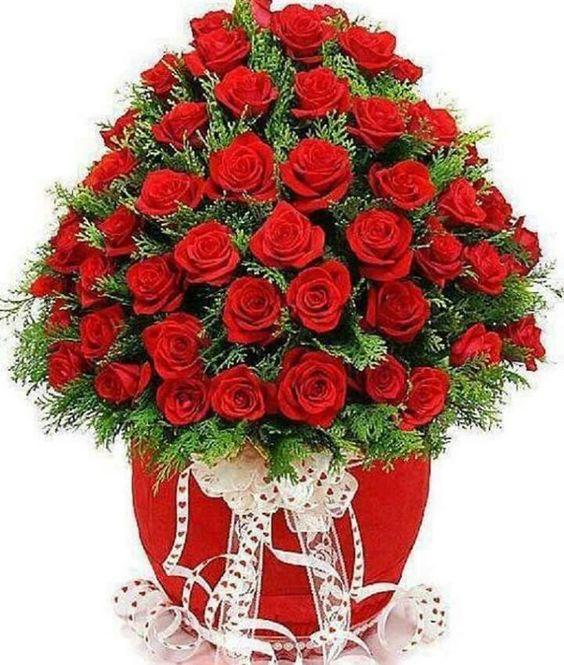 بالصور صوره ورده حمراء , اجمل باقات زهور للماسنجر 186 3