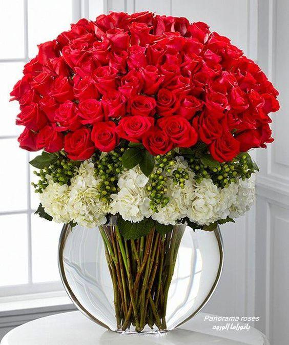 بالصور صوره ورده حمراء , اجمل باقات زهور للماسنجر 186 7