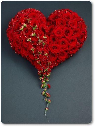 بالصور صوره ورده حمراء , اجمل باقات زهور للماسنجر 186 9