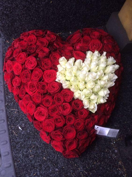 صوره صوره ورده حمراء , اجمل باقات زهور للماسنجر