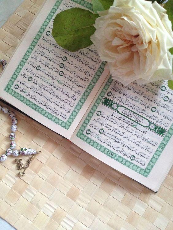 قراءة كتاب في ظلال القرآن