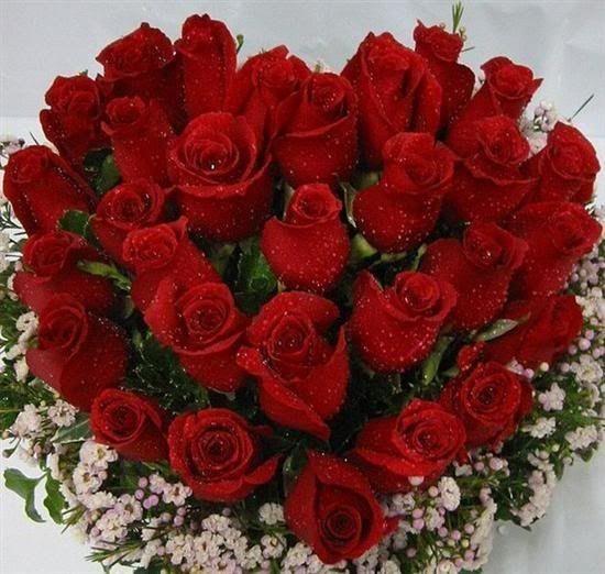 بالصور صوره ورد جوري , اروع باقة زهور بالون الاحمر 288 5