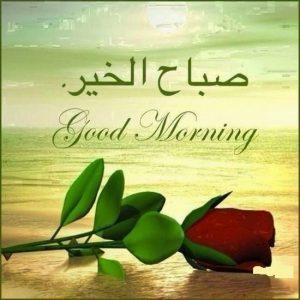 بالصور صور صباح الخير , رمزيات جميلة مكتوب عليها صباح الخير 1034 4