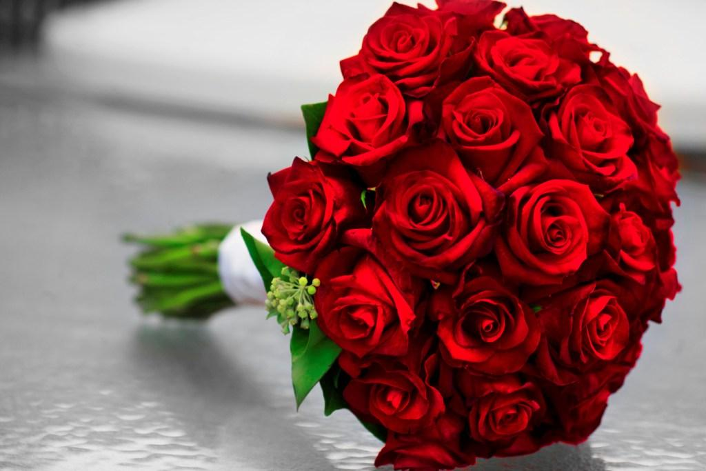 صور صور ورد احمر , خلفيات روعة من الزهور