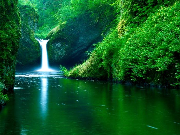 صورة صور طبيعه ساحره , جمال الطبيعة سوف ياخذك لعالم اخر