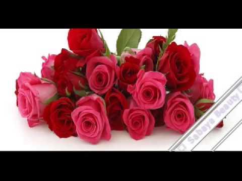 بالصور صور ازهار جميله , صورة لاجمل الورود بالعالم 1241 5