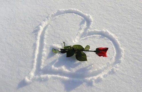 بالصور صور رومانسيه وحب , الحب في كلمات 1281 6