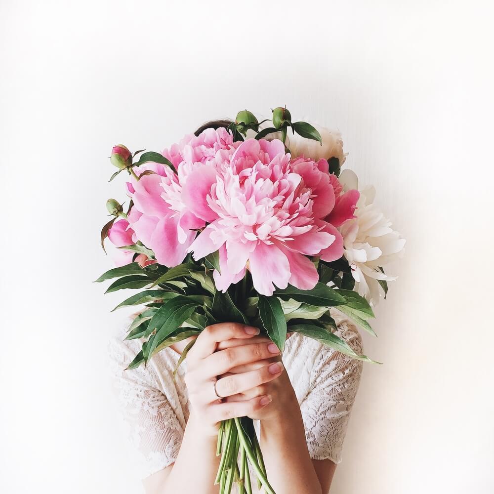 بالصور صور للورود , شاهد جمال الوردة في هذه المجموعة 1306 2