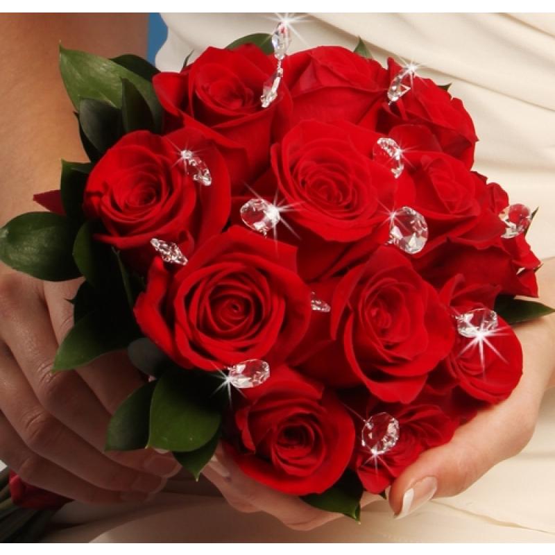 بالصور صور للورود , شاهد جمال الوردة في هذه المجموعة 1306 7