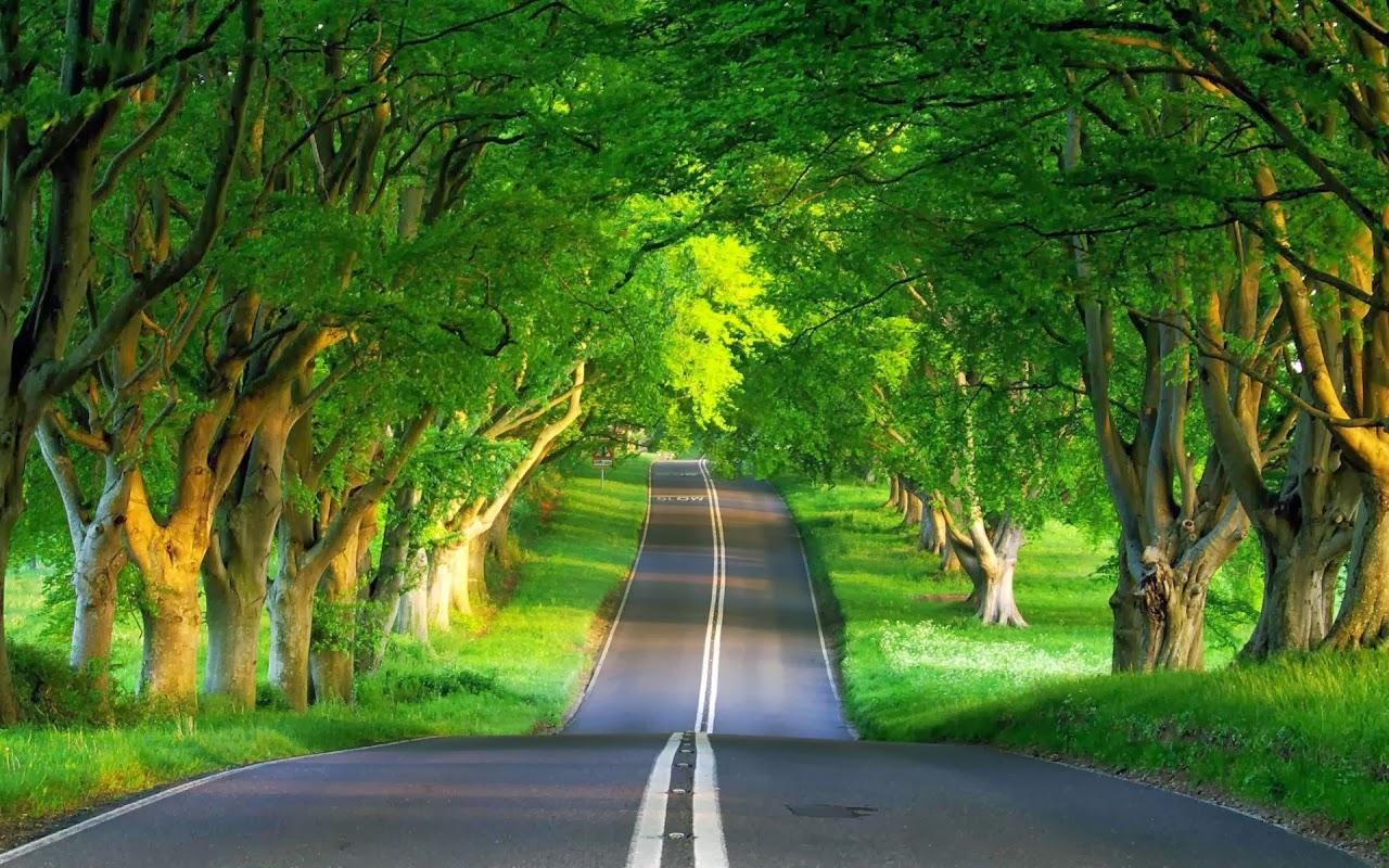 بالصور صور طبيعة جميلة اجمل الصور الطبيعة , اروع صور طبيعة 1432 5