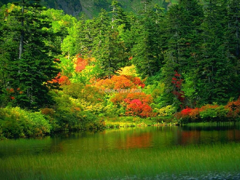 بالصور صور طبيعة جميلة اجمل الصور الطبيعة , اروع صور طبيعة 1432 8