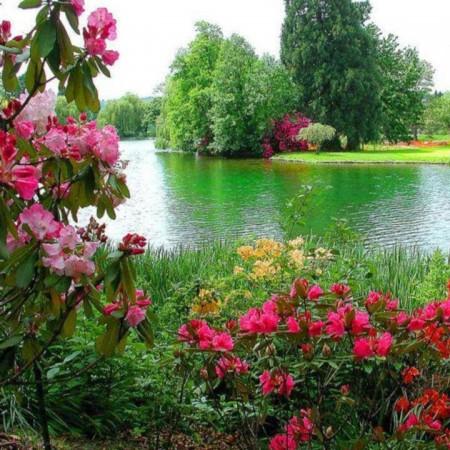 صور صور طبيعة جميلة اجمل الصور الطبيعة , اروع صور طبيعة