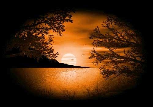 بالصور صور جميلة للبروفايل , احلى صورة للفيس بوك 1493 8