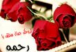 بالصور صور اسم رحمة , صورة مكتوب عليها رحمه 1591 3 110x75
