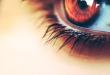 بالصور صور عيون عسليه , اجمل عيون 1696 1 110x75
