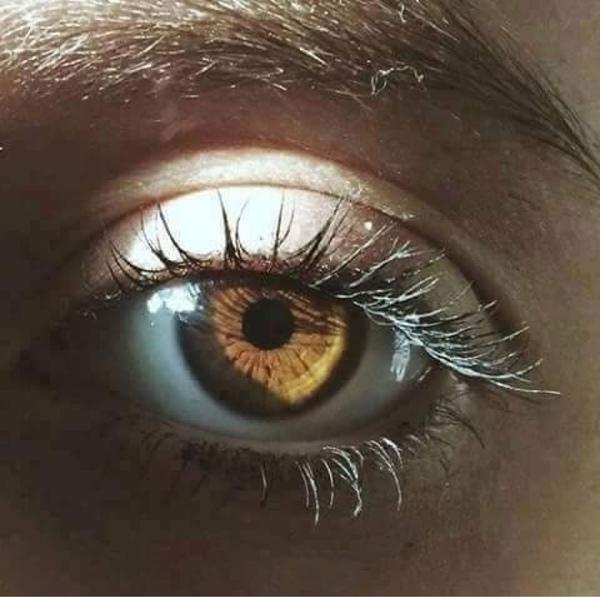 بالصور صور عيون عسليه , اجمل عيون 1696 5