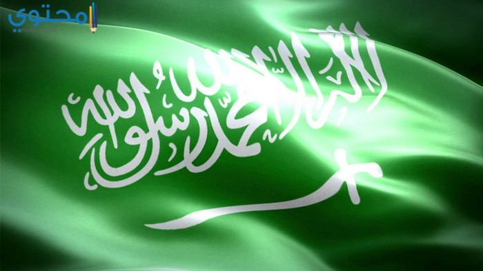 بالصور صور علم السعودية , احلى صورة لعلم السعوديه 1711 6