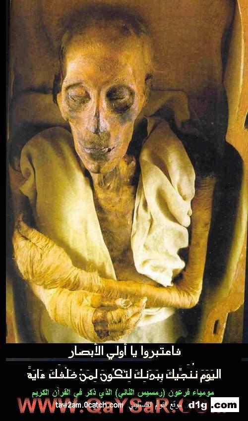 صوره صور فرعون , جثه فرعون
