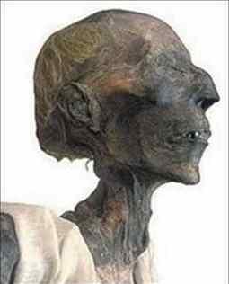 بالصور صور فرعون , جثه فرعون 1729 3