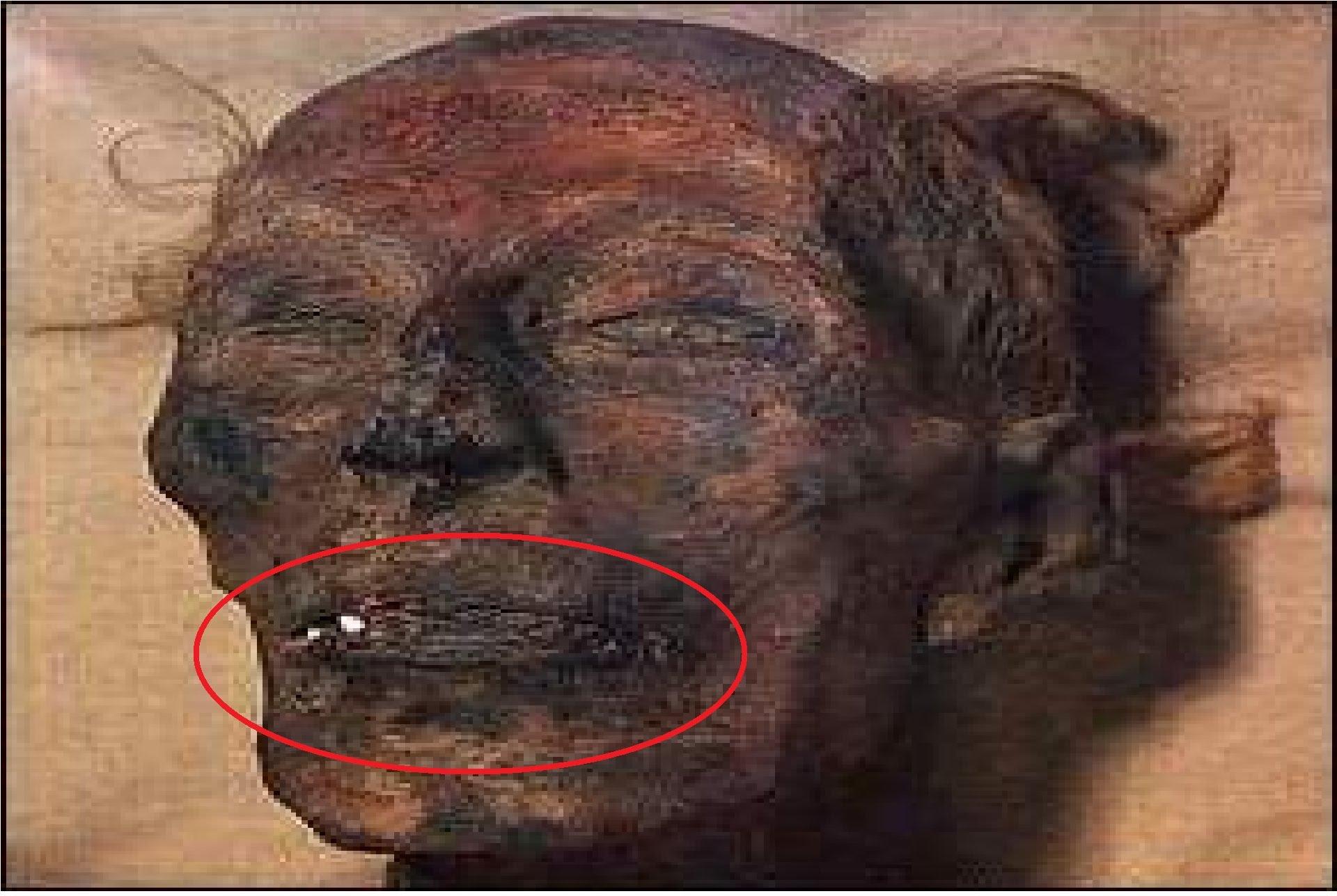 بالصور صور فرعون , جثه فرعون 1729 7