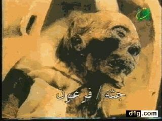 بالصور صور فرعون , جثه فرعون 1729 9