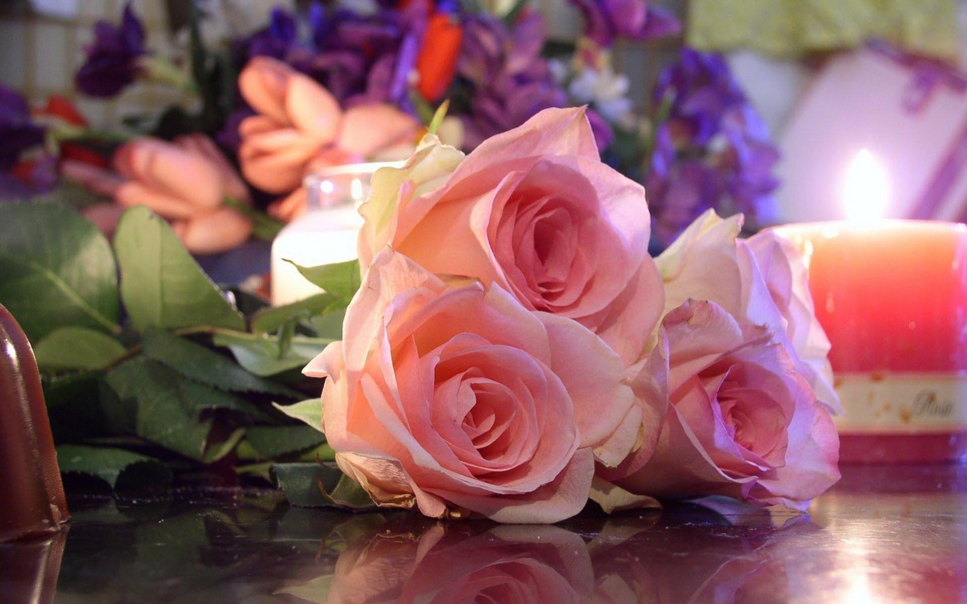 بالصور صور ازهار , احلى صورة للازهار حلوة 1752 3