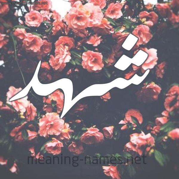 صوره صور اسم شهد , احلى صورة مكتوب عليها شهد