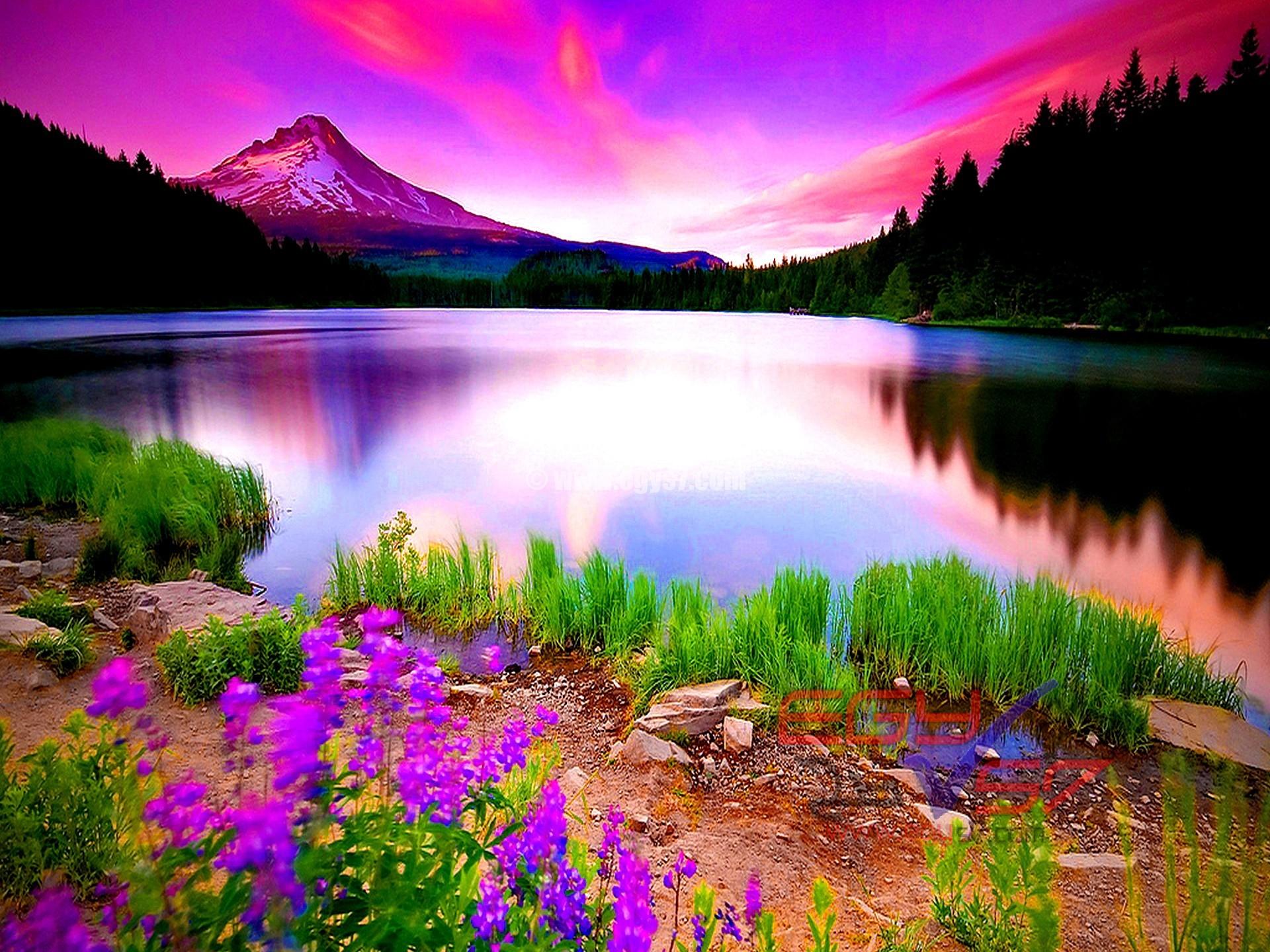صورة صور من الطبيعة , احلى صور طبيعيه