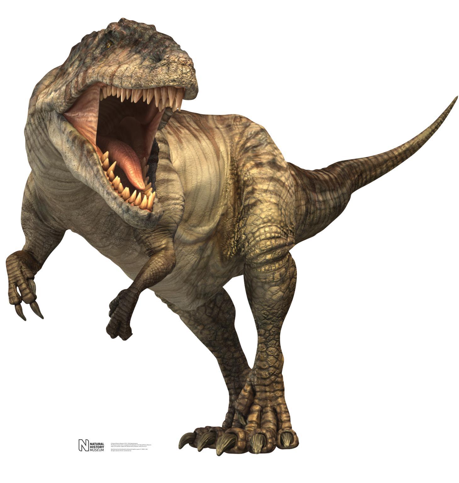 صورة صور ديناصورات , صور ديناصور ضخم