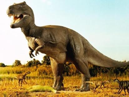 بالصور صور ديناصورات , صور ديناصور ضخم 1904 6