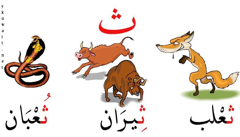 بالصور صور الحروف العربية , صور حروف للاطفال 1907 7