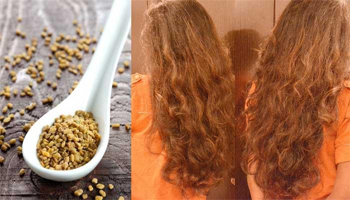 صورة فوائد الحلبة للشعر , تعرف على اهم الفوائد الوصفة على الشعر