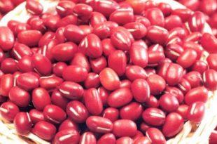 بالصور فوائد الفاصوليا الحمراء , ماذا يحدث عند تناول الفاصوليا الحمراء 4265 2 310x205