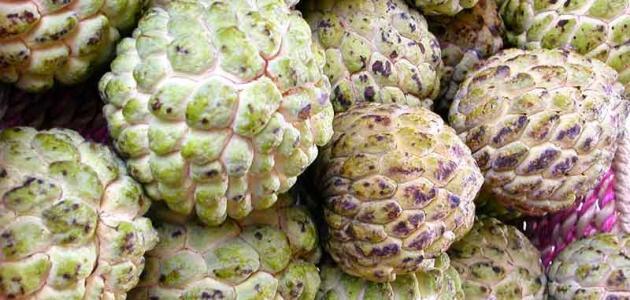 صوره فوائد القشطة للبشرة , فاكهة القشطة وفصلها علي البشرة
