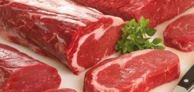 صورة فوائد لحم الابل , فوائد تناول لحم الجمال