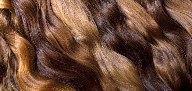 صورة خلطة زيوت لتطويل الشعر في شهر , احصلي عي شعر ناعم وطويل في اقل وقت