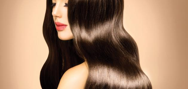 صورة الاهتمام بالشعر وتطويله , طريقه الحفاظ على الشعر