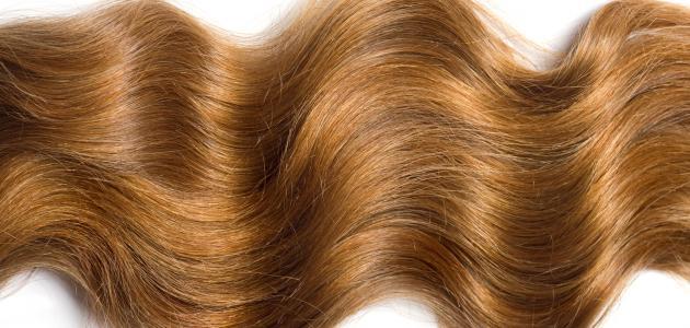 صورة وصفات لتقوية الشعر , احلى وصفه لتقويه الشعر