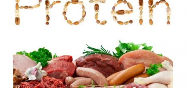 صورة البروتينات في الغذاء , اهمية تناول البروتينات