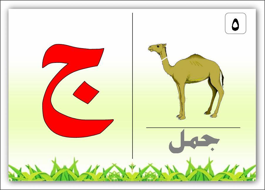 صورة صور حرف الجيم , صور للحروف الابجدية