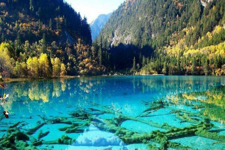 بالصور صور طبيعة خيالية , صور خيالية للطبيعة 1038 2