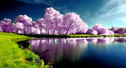 صورة صور طبيعه , اجمل المناظر من الطبيعه