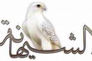 صوره معنى اسم شيهانه , لماذا يحب العرب اسم شهيانة؟