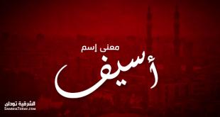صورة معنى اسم اسيف , اسيف في معجم المعاني الجامع