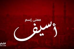 صوره معنى اسم اسيف , اسيف في معجم المعاني الجامع