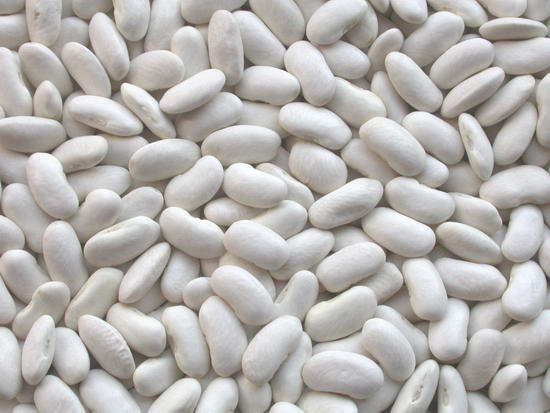 صورة فوائد الفاصوليا البيضاء , اهم الفوائد التي تعود علينا من تناول الفاصوليا البيضاء