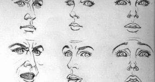 صوره خطوات رسم الوجه , رسم الوجه بالفيديو