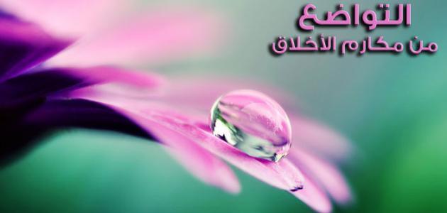بالصور حكمة عن التواضع , حكم رائعه عن التواضع 8999